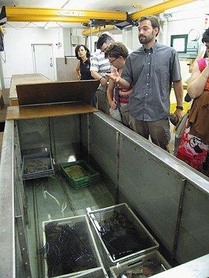 Explicaciones ante los tanques de desalinización. CASC.